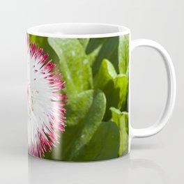 English Daisy Coffee Mug