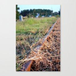 Covered Rail Canvas Print