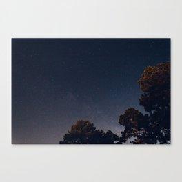 Early Hours II Canvas Print