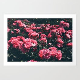 moody spring Art Print