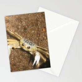 Ghost Crab of The Outer Banks Stationery Cards