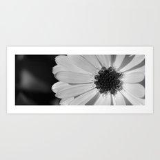 emerging flower Art Print