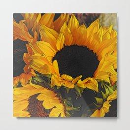 Sunflower Close Up Metal Print