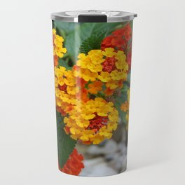 Macro Of Shrub Verbenas or Lantanas (Lantana Camara)  Travel Mug