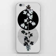Geometry and Nature II iPhone & iPod Skin