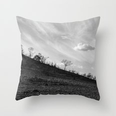 Pilanesberg 04 Throw Pillow
