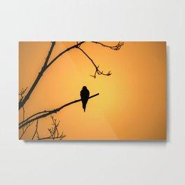 Bird Silhouette - Sunset Metal Print