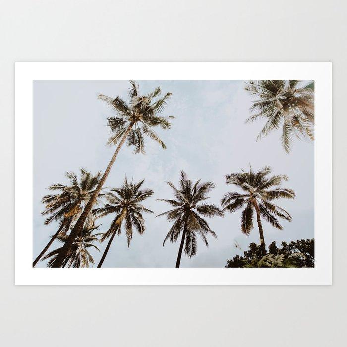 palm trees xiv / chiang mai, thailand Art Print
