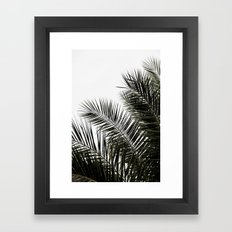 Palm Leaves 3 Framed Art Print