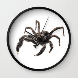 Black spider Wall Clock