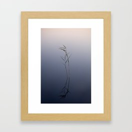 Reflecting reed Framed Art Print