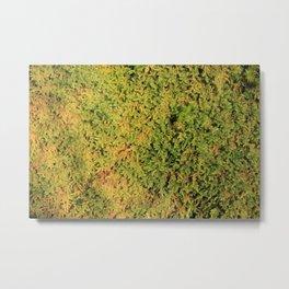 Moss soft forest Metal Print