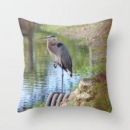 Great Blue Heron on One Leg Throw Pillow