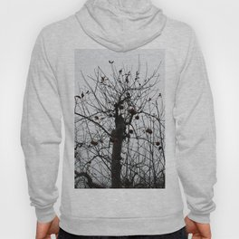 Winter's Apples Hoody