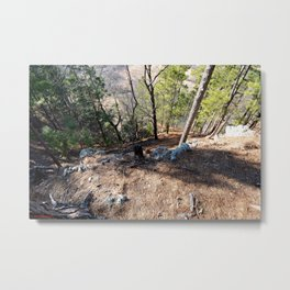 Climbing Up Sparrowhawk Mountain above the Illinois River,No. 5 of 8 Metal Print