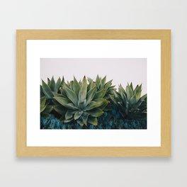 California Flora Framed Art Print