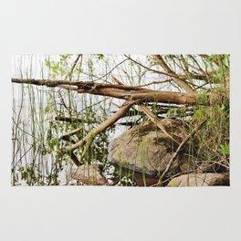 Deadwood on the beach Rug
