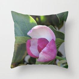 A Fig Prefigured Throw Pillow