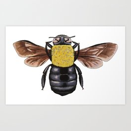 The Carpenter Bee Art Print