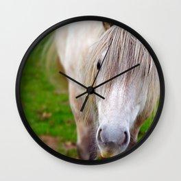White Pony  Wall Clock