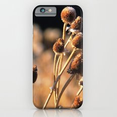 Brown Eyes Slim Case iPhone 6s