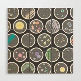 Petri Dish Wood Wall Art