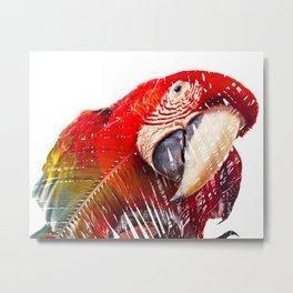 Guacamaya / Macaw Metal Print