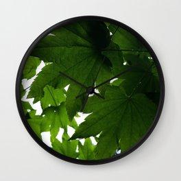 Vine Maple After Summer Rain Wall Clock