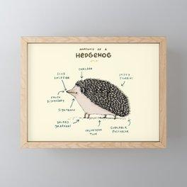 Anatomy of a Hedgehog Framed Mini Art Print