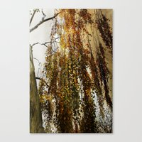 birch Canvas Prints featuring Birch by TakaTuka Photo