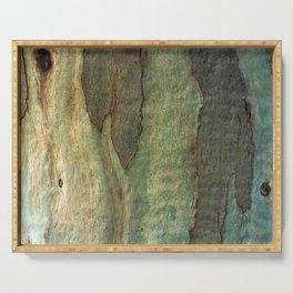 Eucalyptus Tree Bark 6 Serving Tray