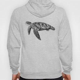 Sea Turtle 1 Hoody