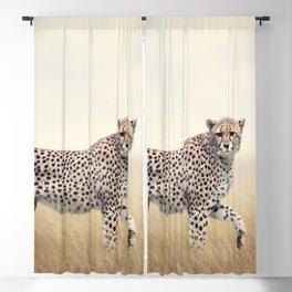 Two Phenomenal Spectacular Desert Beasts Walking In Savannah UHD Blackout Curtain