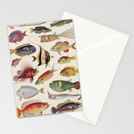 Varieties of Fish Stationery Cards
