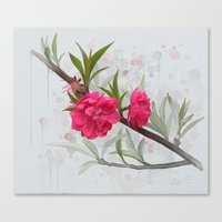 blossom Canvas Prints featuring Blossom by IvaW