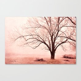 Pink Mist Canvas Print