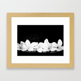 Singapore White Plumeria Flowers the Fragrance of Hawaii Framed Art Print