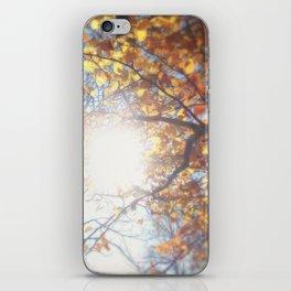 Autumn Afternoon iPhone Skin