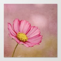 blossom Canvas Prints featuring blossom by Iris Lehnhardt - Photography