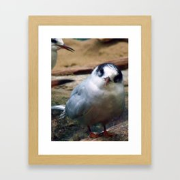 And You? Framed Art Print