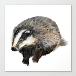 Billy Badger Canvas Print