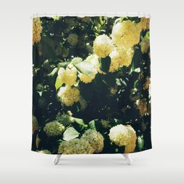 Yellow Snowballs II Shower Curtain