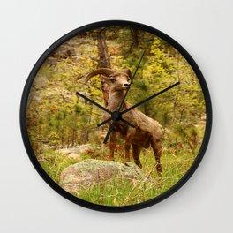 His Teritory Wall Clock