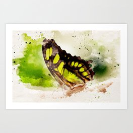 Friendly Butterfly Art Print