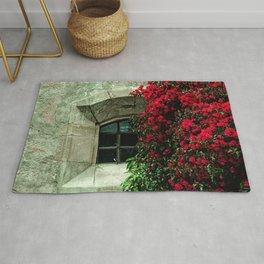 Secret Window Behind the Red Flowers Rug