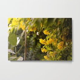 Gardens at Dawn Metal Print