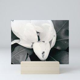 Magnolia Flower Mini Art Print