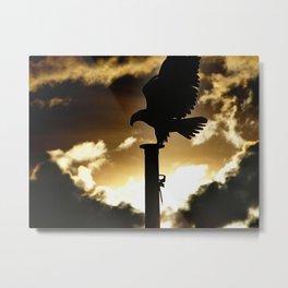 Golden Eagle Sunset Metal Print