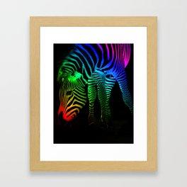 Rainbow Zebra Framed Art Print