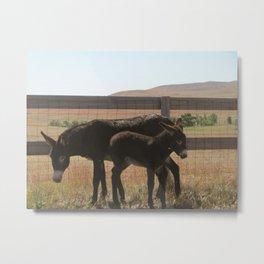 Donkey Fam Metal Print
